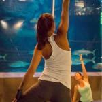 E+E Predator Yoga (3)