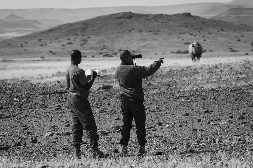 Namibia - Desert Rhino Camp 2014-08-100