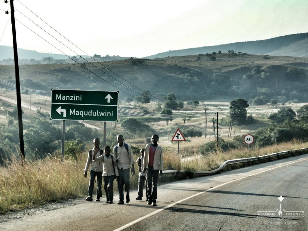 Swaziland-lagirafequivole (1)