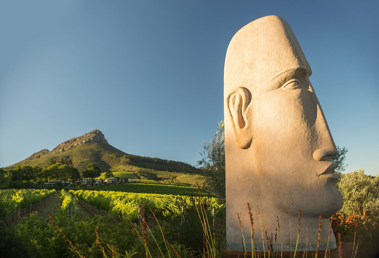 Anton Smit's Stone head