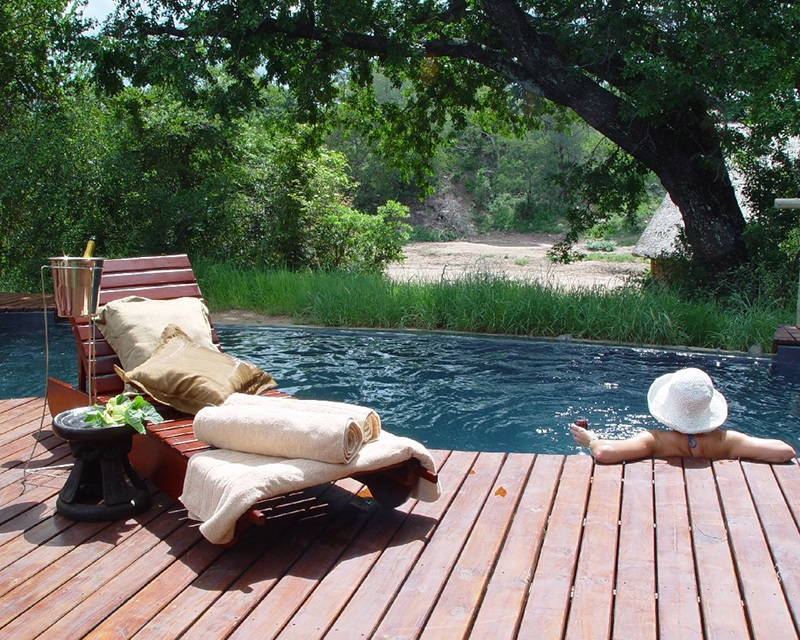 Poolside view of the surrounding nature a Seolo Africa's Rhino Lodge
