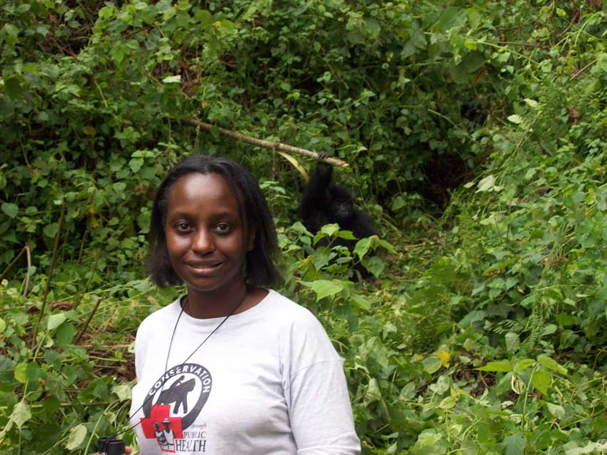 Kalema Kikusoka conducting gorilla clinical observation at Mount T – by Charles Capel