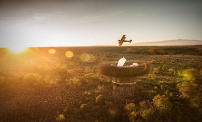 Bird Nest –courtesy of Wilderness Safaris/by Jimmy Nelson