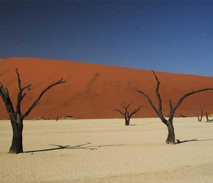 Sand dunes on the Sossuvliki Excursion –photos arevia Nambia Tours & Safaris