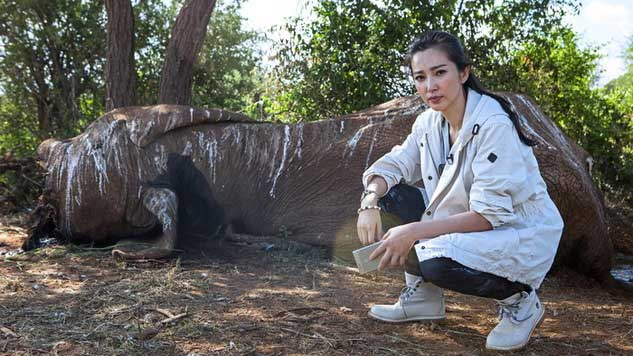 """Actress and UNEP Goodwill Ambassador Li BingBing poses in front of a speared 45-year-old elephant – by Georgina Goodwin of AFP / via <a href=""""http://mgafrica.com/article/2015-08-13-chinese-in-africa-the-unexpected-conservationists"""" target=""""_blank"""" rel=""""noopener"""">Mail & Guardian Africa</a>"""