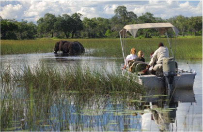 andBeyond offering chill-out time and spellbinding game-viewing at Sandibe Okavango Safari Lodge on their 2018 Post Tour – courtesy of andBeyond