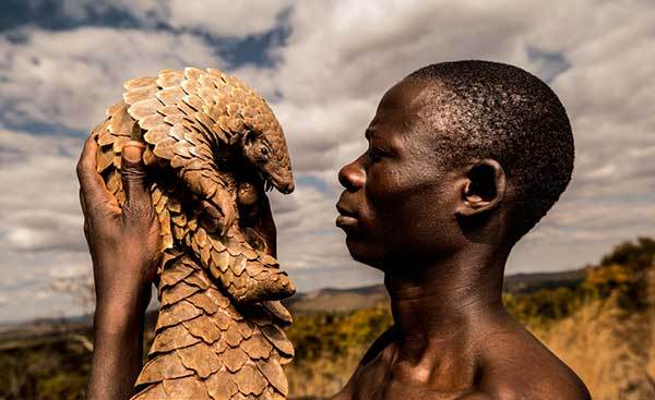 One of the Pangolin Men – by Adrian Steirn
