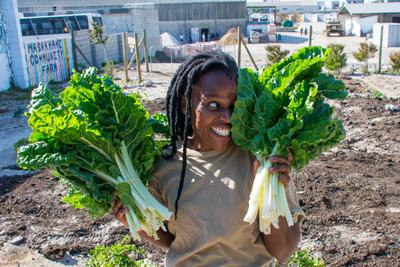 Grootbos Foundation: Masakhane Community Farm