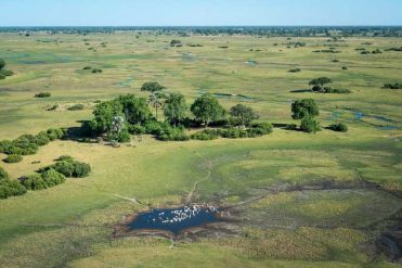 Landscape around Qorokwe – courtesy of Wilderness Safaris