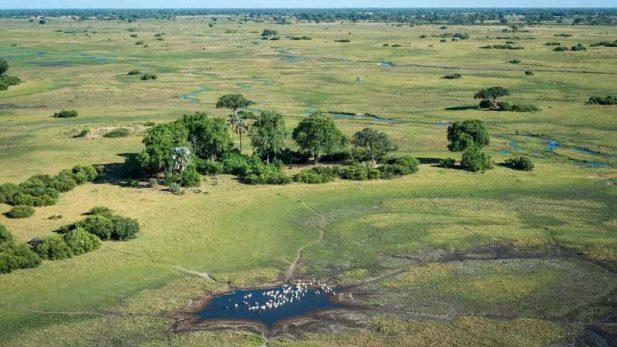 Landscape around Qorokwe –courtesy of Wilderness Safaris